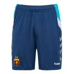 HC VARDAR TRAINING SHORTS BLUE