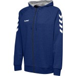 Hummel GO kids cotton zip hoodie