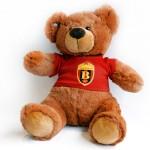 14 TEDY BEAR HC VARDAR